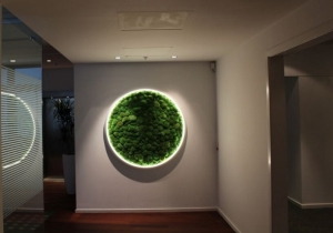 "lighting: ""LUCE VERDE\"" BY SATTLER 